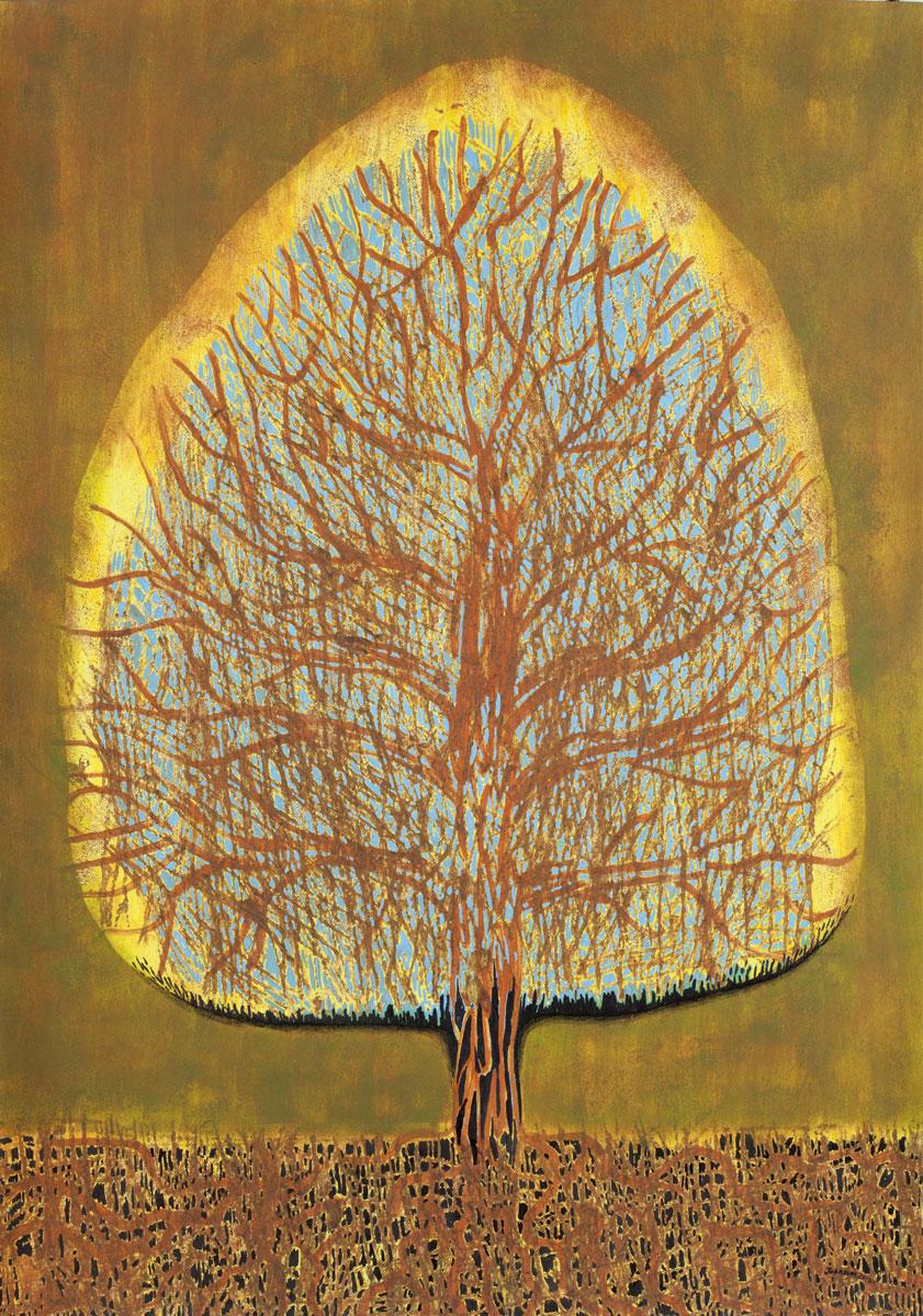 Drzewo -3